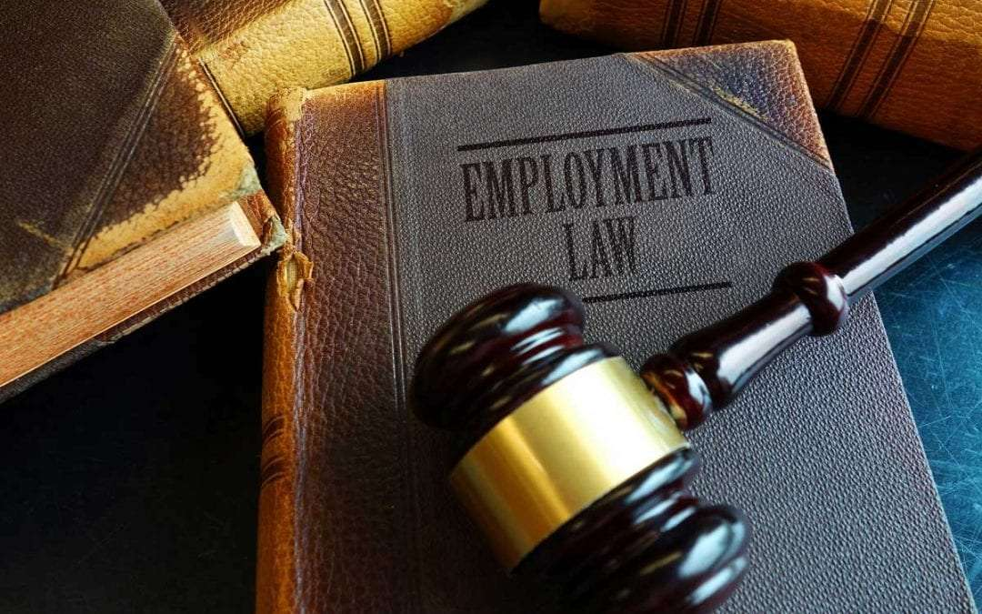 How Can an Employment Lawyer Help Your Business?